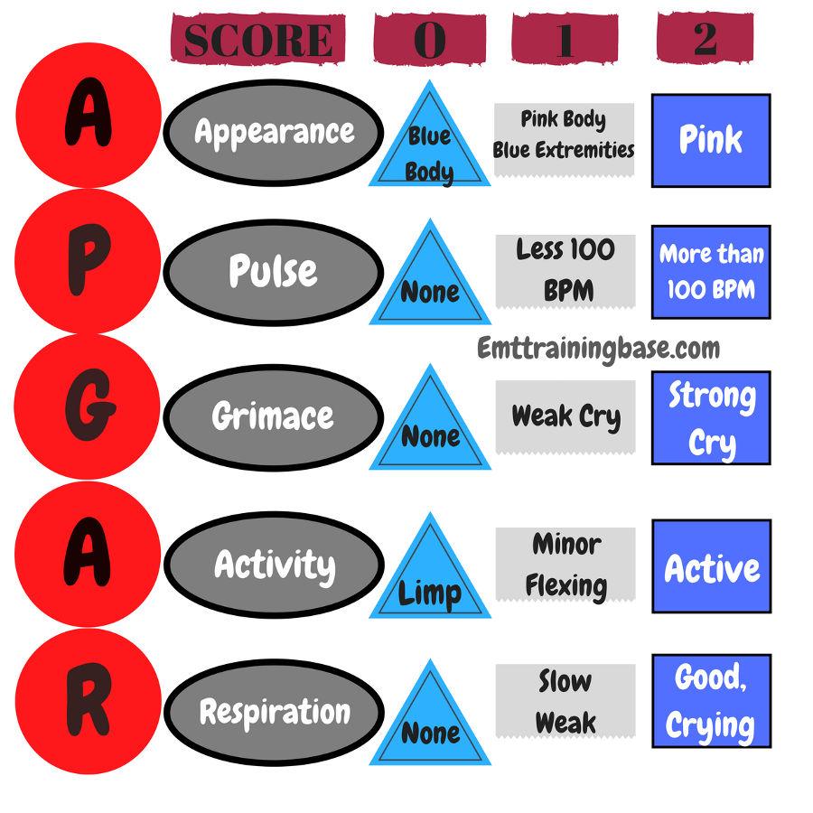 APGAR Score Chart